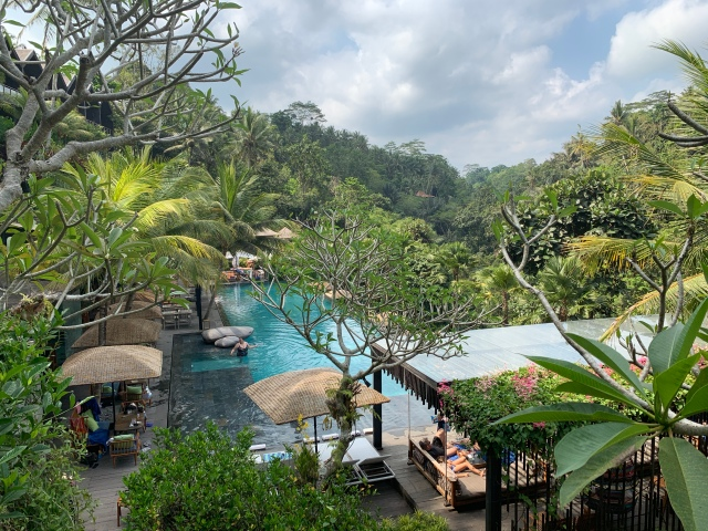 Jungle Fish Day Pool, Ubud