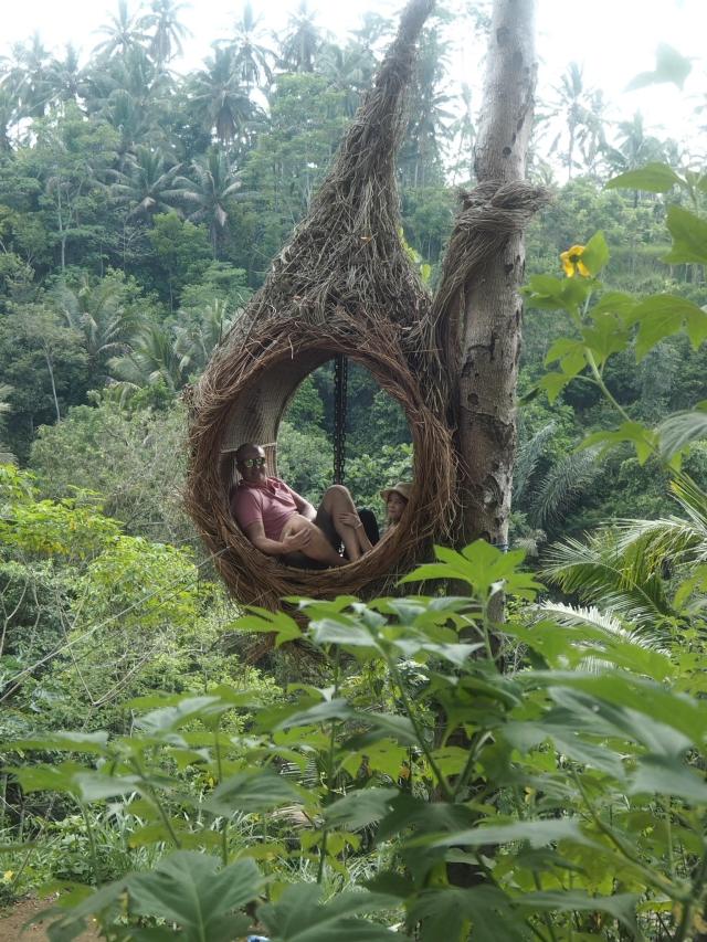Bali Swing, Ubud, Bali