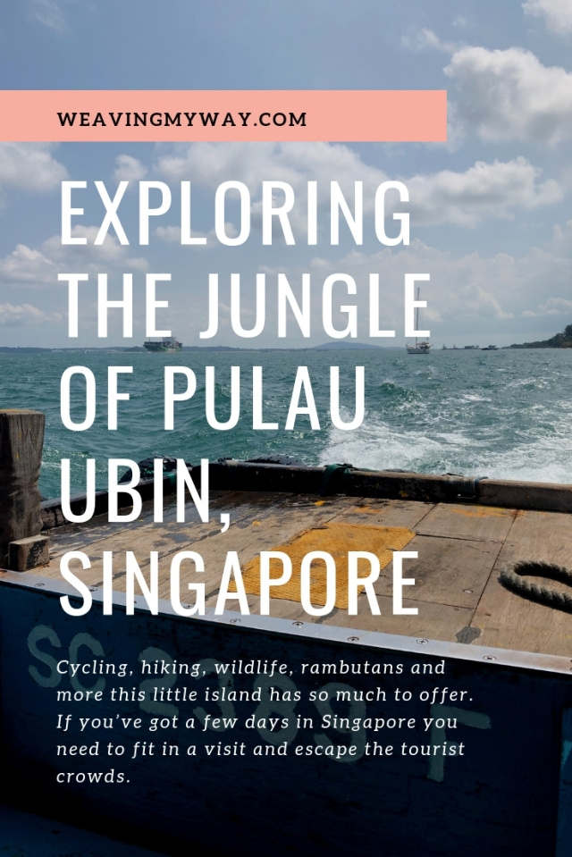 Cycling, hiking, wildlife, rambutans and more this little island has so much to offer. If you've got a few days in Singapore you need to fit in a visit and escape the tourist crowds.