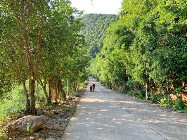 Bird Park Nature Reserve, Ninh Binh