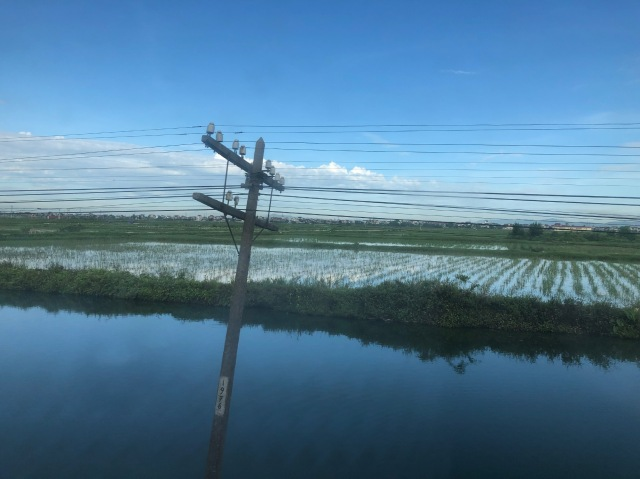 Train journey Hue - Ninh Binh